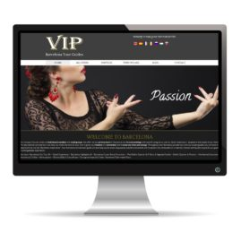 Vip barcelona tours guides